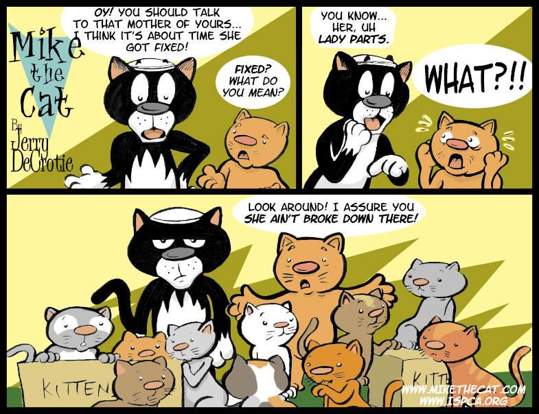 MIKE THE CAT IX